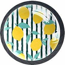 Knobs for Dresser Drawers Citrus Illustration with