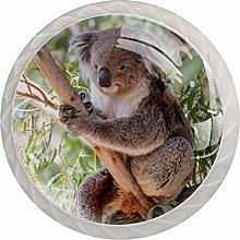 Koala Animal Forest White Crystal Drawer Handles