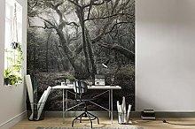 Komar SHX5-018 Fleece Photo Wallpaper XXL