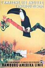 L'Amazone Toucan Vintage Travel Poster Canvas