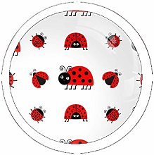 Ladybird Icon Set of 4 Vintage Color Multi
