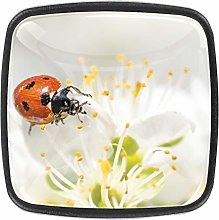Ladybug Insect Blossom Cabinets Knobs 4pcs for