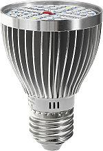 Lamp Bulb Plant growth light bulb