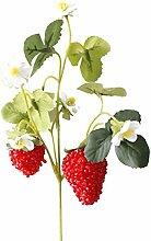LANGPIAOEZU Realistic 1pcs Acrylic Strawberry
