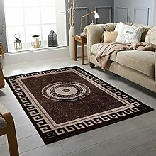 Large Area Rugs Soft Living Room BROWN RUG Carpets