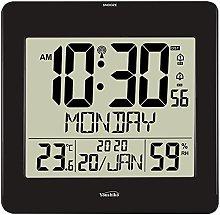 Large Jumbo LCD Radio Controlled ( UK & Ireland