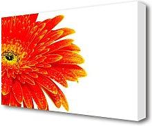 Lava Petals Flowers Canvas Print Wall Art East