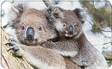 LDHHZ Koala Bear Welcome Door Mat Indoor Outdoor