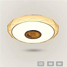 Led Ceiling Light, Dimmable Mosquito Net Ceiling