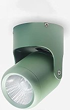 LED downlight LED Ceiling Spotlight Surface