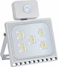 LED Flood Light with Induction, IP65 Waterproof,