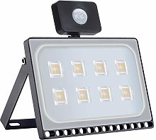 LED Flood Light with Induction, IP66 Waterproof,