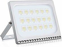 LED Floodlight 100W 8000lm Super Bright Security
