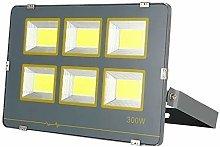 Led floodlight LED Outdoor Floodlight   IP 65