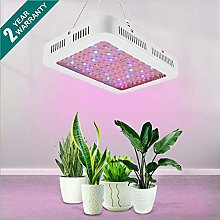 LED Grow Light,1000W Full Spectrum LED Plant