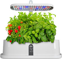 LED grow light decorative plants, ideal for indoor