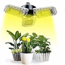 LED Grow Light, E27 1000W Phyto Lamp 3000K Full