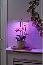 LED Plant Growing Light – Hydroponic & Daylight