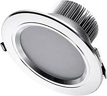 LED Recessed Retrofit Downlight Professional LED