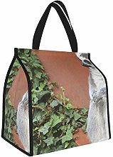 Lemur Sit Old Gray Lunch Tote Bags Insulated Lunch