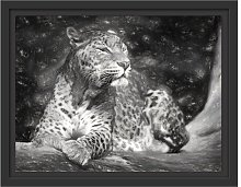 Leopard in Nature Framed Graphic Art Print East