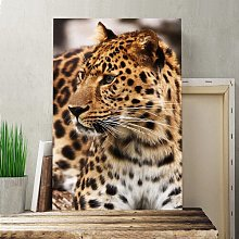 Leopard on Alert Photographic Print on Canvas Big