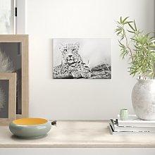 Leopard Photographic Print on Canvas Big Box Art