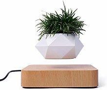 Levitating Plant Pot,Magnetic Floating Plants Desk