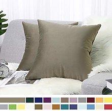 Lewondr Velvet Soft Cushion Cover, 2 Pack Modern