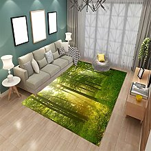 LGXINGLIyidian Carpet Customizable Beautiful Woods