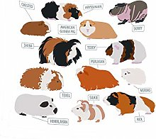 Liamjh Bed Blankets Cute Guinea Pig Bed Throw Faux