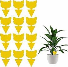 libelyef Plant Flycatcher, 12PCS Sticky Fruit Fly