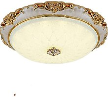 Lighting Fixture European Style Ceiling Lamp LED