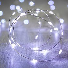 Lights4fun Indoor Fairy Lights with 100 White