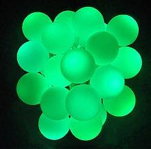 LightsGo Battery Powered Berry Ball LED Fairy