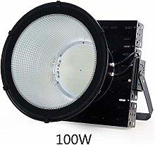 LIIYANN Outdoor Waterproof LED Floodlamp, LED