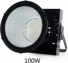 LIIYANN Outdoor Waterproof LED Floodlamp, LED