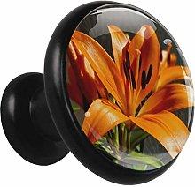 Lily Orange Cabinet Pull Round Solid Metal Black