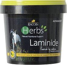 Lincoln Herbs Laminide (600g) (May Vary)