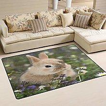 linomo Area Rug Cute Bunny Rabbit Hare Floor Rugs