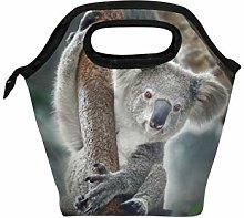 Linomo Cute Animal Koala Lunch Box Insulated Lunch