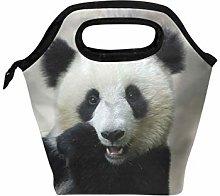 Linomo Cute Animal Panda Face Lunch Box Insulated