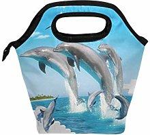 Linomo Sea Animal Dolphin Lunch Box Insulated