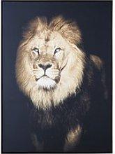 Lion Canvas Print 103x143