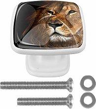 Lion Drawer Knob for Home Cabinet Dresser Bookcase
