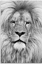 Lion Face Canvas Beautiful Black and White Wall