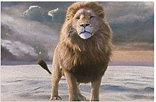 Lion Movie The Chronicles Of Narnia The Lion The