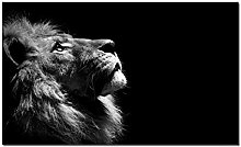 Lion Painting Canvas Print Poster Wall Pictures
