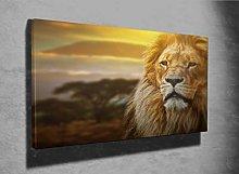 Lion Portrait on Savanna Landscape Photo Canvas