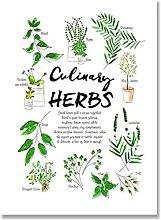 LIUYUEKAI Culinary Herbs Wall Art Picture Canvas